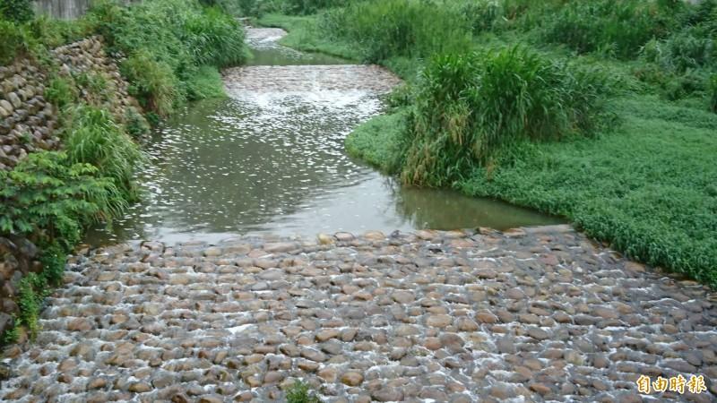 新竹縣關西鄉親對於桃園市政府環保局指稱,9日的水污染事件泡沫只見於跌水處,10公尺遠外就看不了的說法也甚為不滿。圖為9日牛欄河水白泡沫綿延而下的場景。(資料照,記者黃美珠攝)