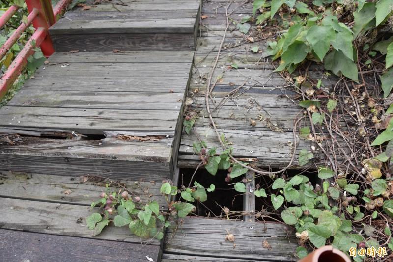 吊橋的木棧道都已經損害嚴重造成危險(記者葉永騫攝)