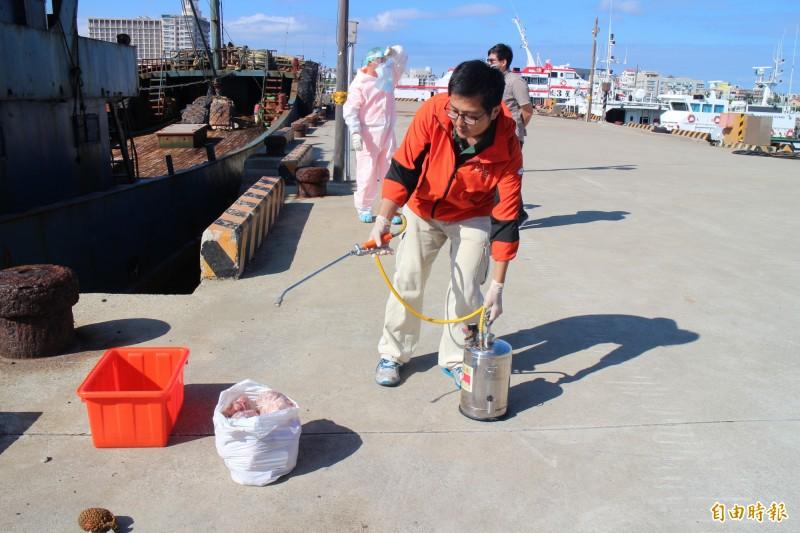動植物防檢局派員,將中國漁船豬肉先行消毒。(記者劉禹慶攝)