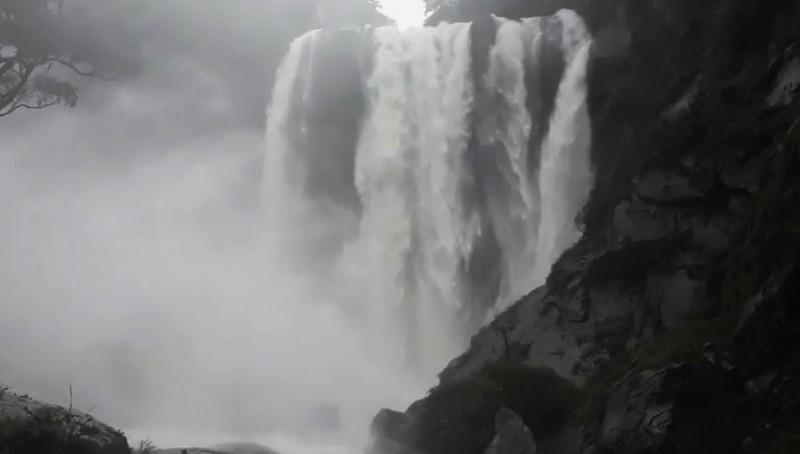 山區雨勢增強,古坑草嶺蓬萊瀑布大暴衝。(讀者提供)