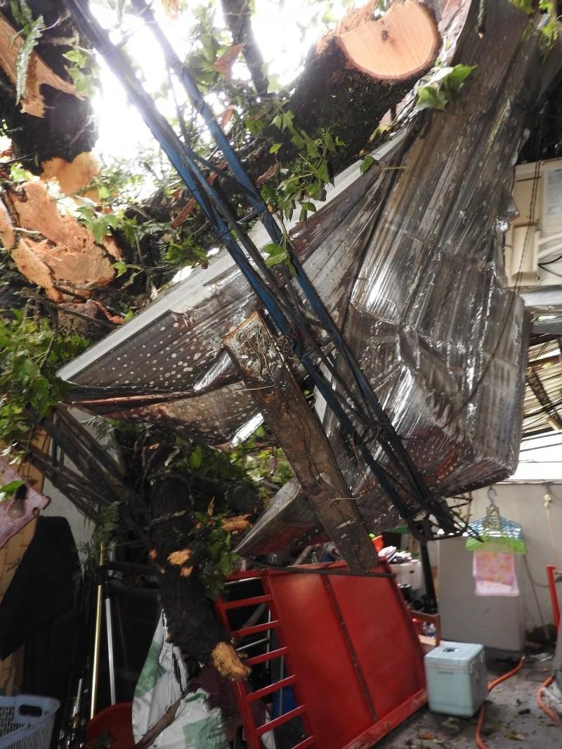 被樹木砸中的民宅屋頂嚴重變形,居民直呼九死一生。(記者佟振國攝)