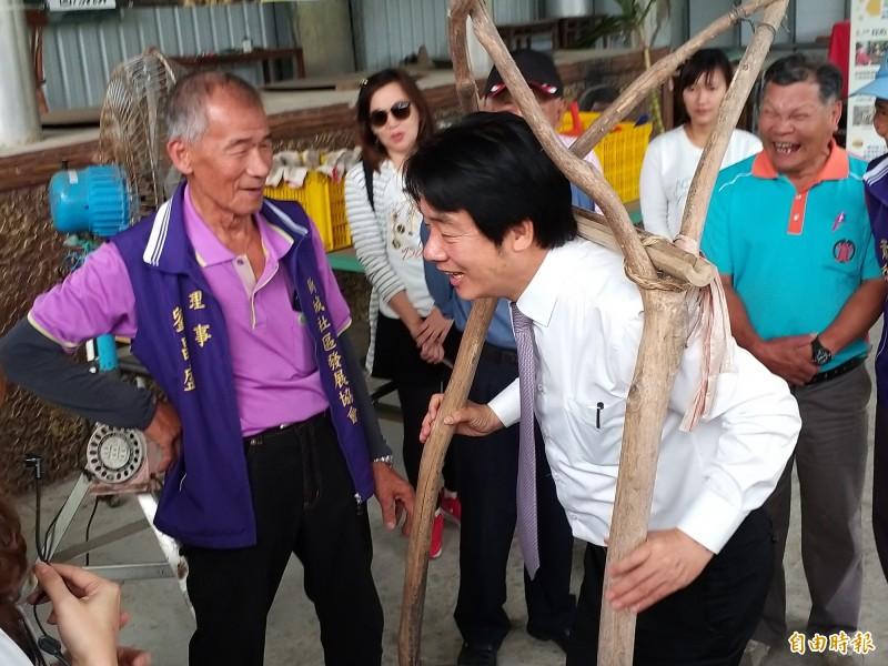 行政院前院長賴清德今天參訪新竹縣寶山鄉的新城風糖公司時,現場體驗榨甘蔗、揹蔗架,與當地農民互動熱烈。(記者廖雪茹攝)