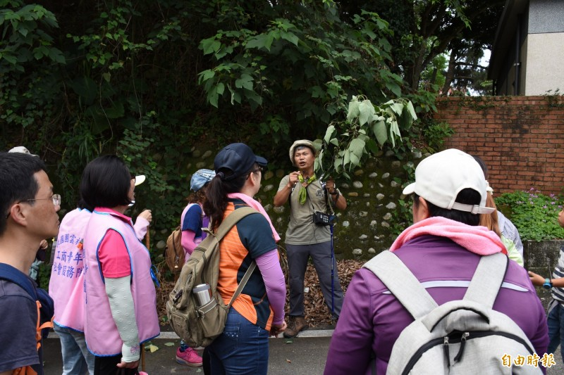 古國順(右二)講解植物生態。(記者林國賢攝)