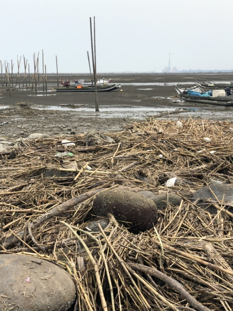伸港海域海飄垃圾堵住漁民出海作業的出入口。(記者張聰秋翻攝)