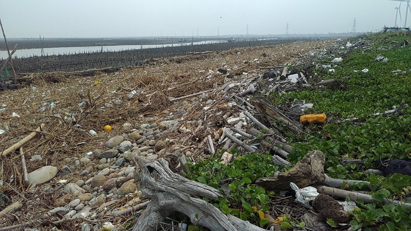 彰濱伸港海域出現數公里長的「海飄垃圾」,工業局以垃圾是飄在工業區海堤外,非工業區管理推卸清理之責。(記者張聰秋攝)