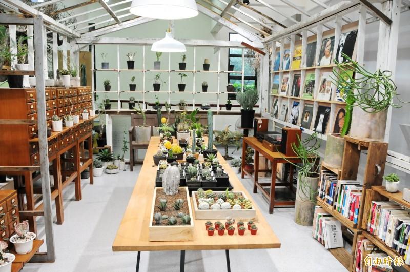靜宜大學「蓋夏圖書館」推出「森之時光」創意特色展,結合館藏黑膠唱片與多肉植物,營造悠然閱讀環境。(記者歐素美攝)