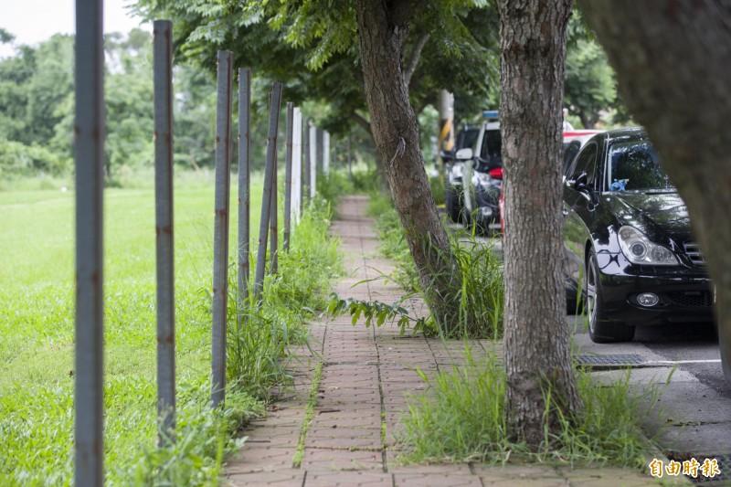 透過人行環境的改善,將打造青青草原無障礙的透水鋪面、1.5公尺的步道拓寬到2.45公尺,重塑舒適、安全友善的人行空間。(記者蔡彰盛攝)