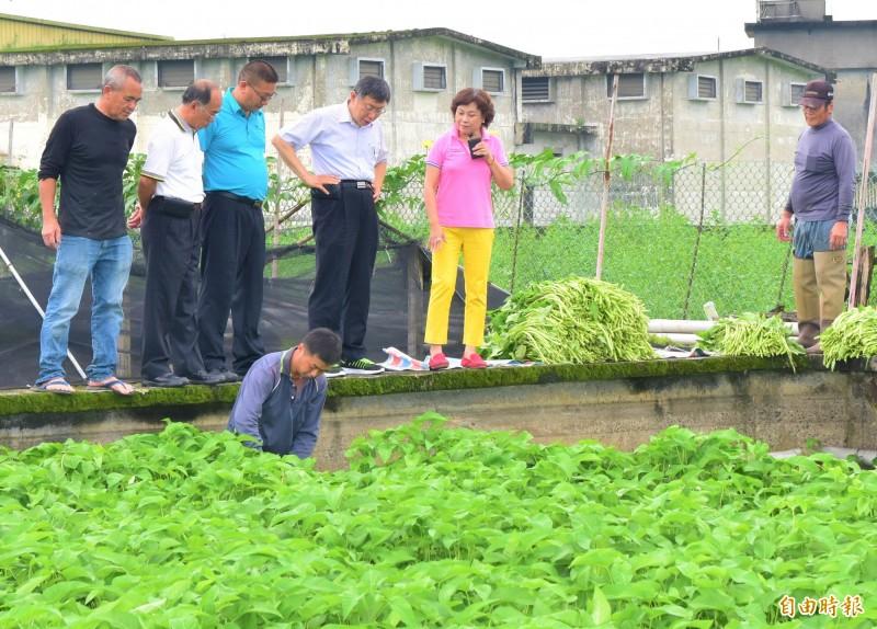 台北市長柯文哲(左四)今到宜蘭參觀礁溪、三星農業發展狀況。(記者張議晨攝)