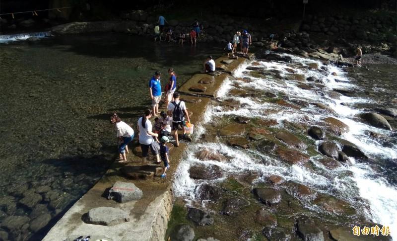 桃園市唯一合法公告開放溪流戲水區域,小烏來宇內溪開放囉!(記者李容萍攝)