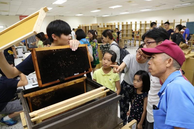 中興大學兩年一度的昆蟲展,端午節在惠蓀堂開展,大人小孩看到蜜箱都很好奇。(記者蔡淑媛翻攝)