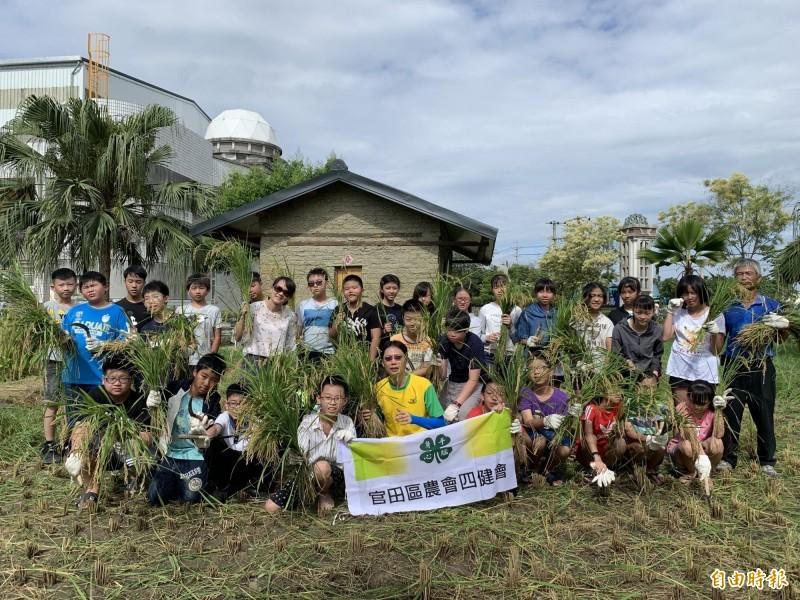 官田國小校內幸福農場自種稻米和蔬菜。(記者楊金城攝)