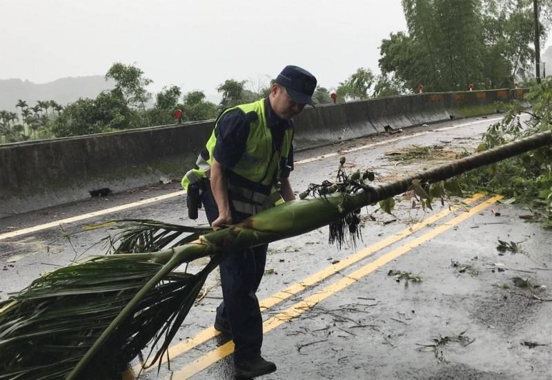 檳榔樹倒在台八線上,東勢分局員警趕緊將樹移到一旁,以免阻礙交通。(記者歐素美翻攝)