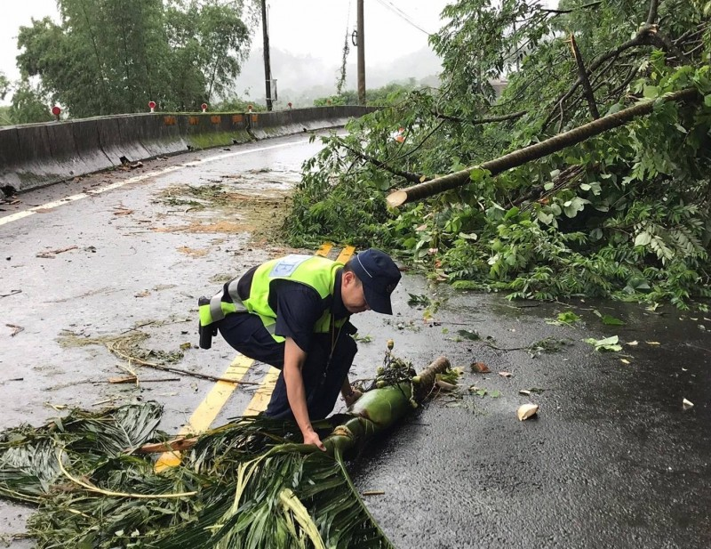 員警將傾倒的檳榔樹砍成數段移到路旁。(記者歐素美翻攝)