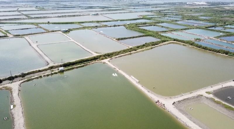 台鹽綠能簽約推動漁電共生的台南沿海漁塭現況。(圖:台鹽綠能提供)