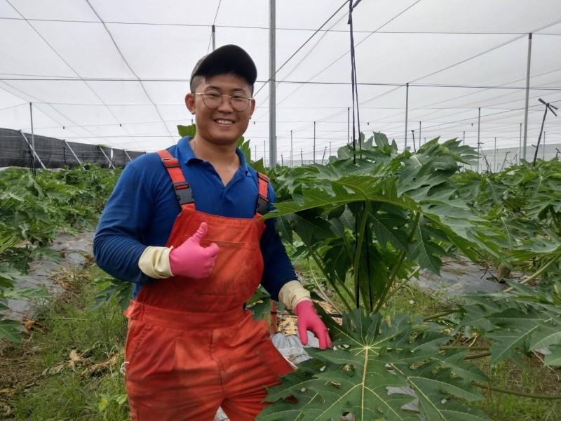 屏東青農林偉弘要在農業上闖出一片天。(農糧署南區分署提供)