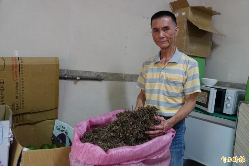 張聰文堅持「春耕風味茶」所用的仙草凍,要買仙草來自己做。(記者劉曉欣攝)