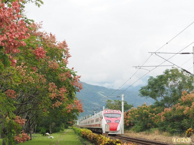 瑞和車站的鐵道風景也是不少鐵道迷取景的好地方。(記者王秀亭攝)