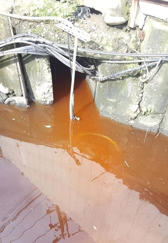 大里區國中路的排水溝昨天下午被橘紅色廢水染紅,環保局追查發現是食品廠違法排放廢水開罰。(記者陳建志翻攝)