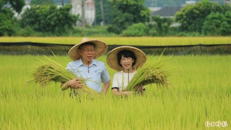 台北市長柯文哲與夫人陳佩琪今天早上到花蓮縣南區訪問,到農田了解稻米種植。(記者王錦義攝)
