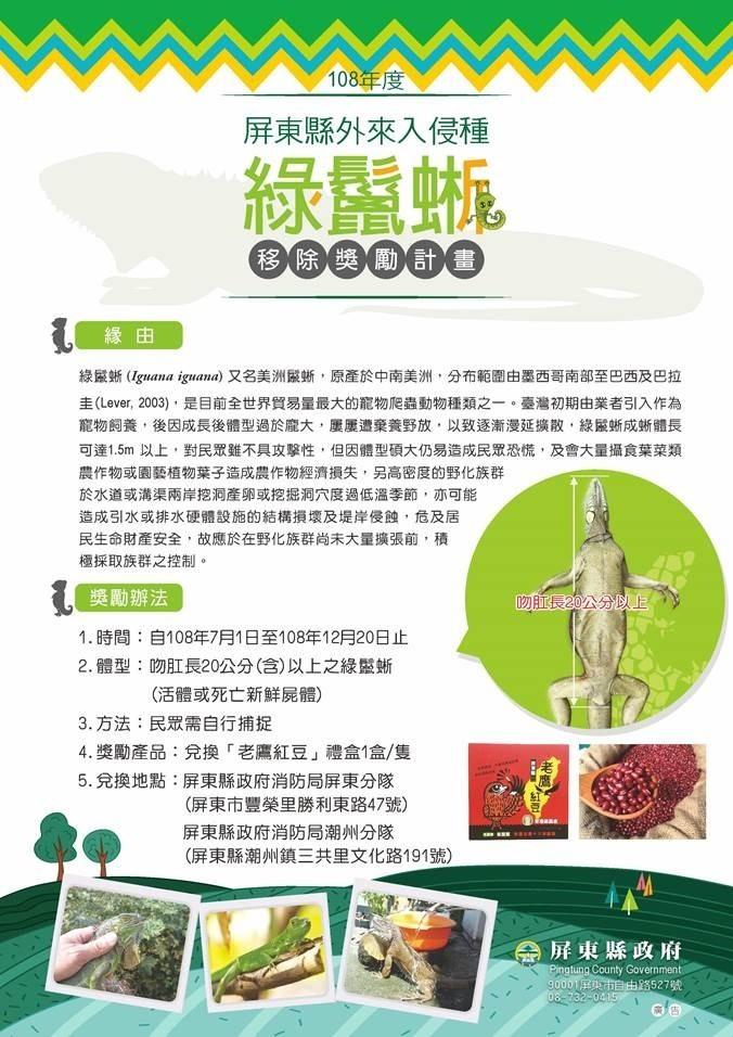 屏東縣政府推綠鬣蜥換紅豆獎勵。(縣府提供)