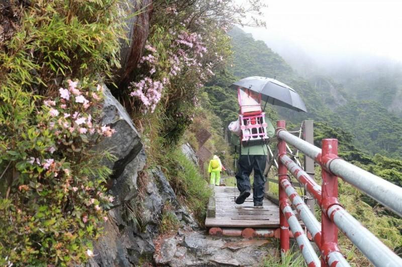 希諾奇登山隊隊員輪流揹著媽祖,順利攻頂玉山。(劉子堅提供)