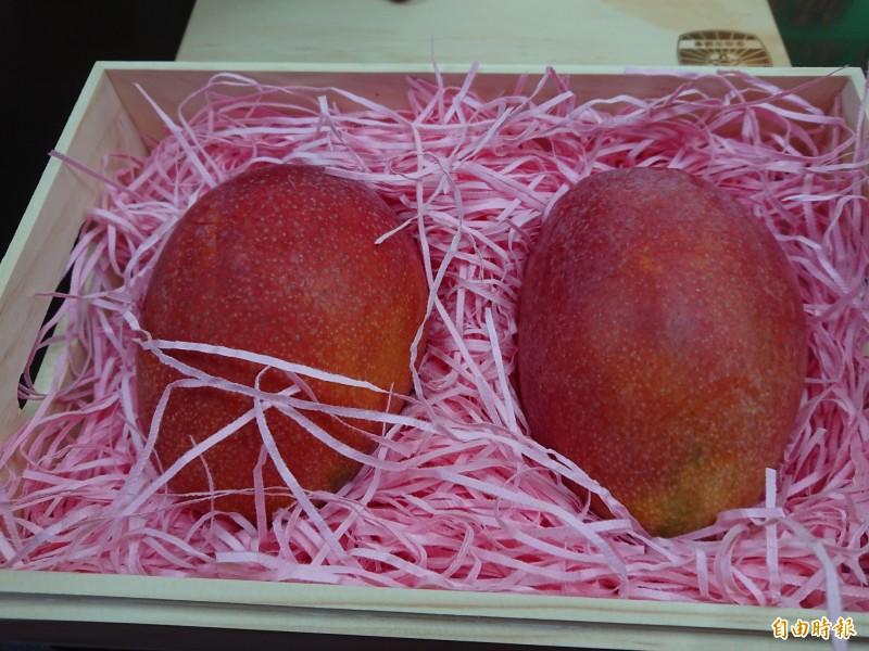 南市議會出訪日本將帶的芒果精緻伴手禮。(記者洪瑞琴攝)