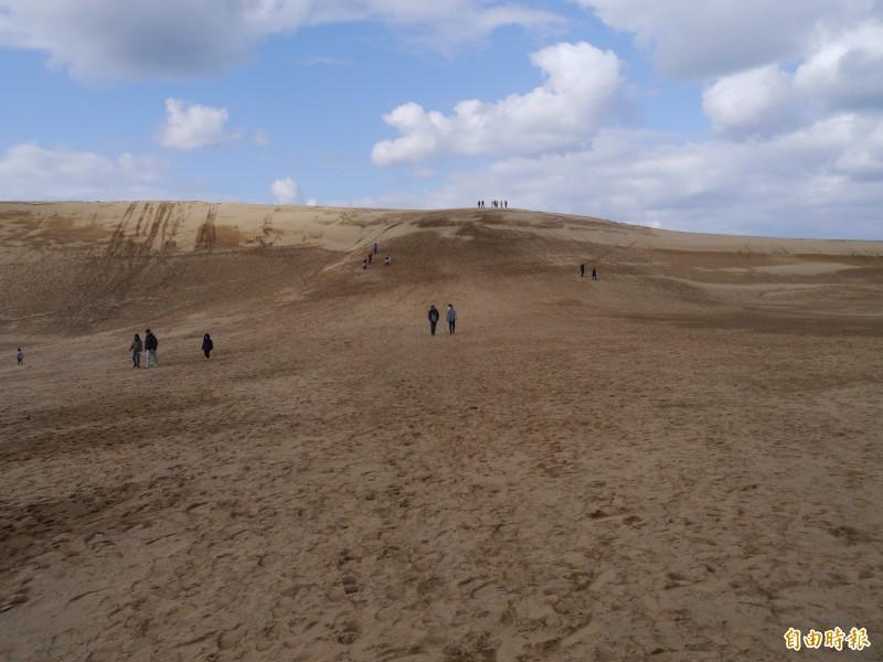 鳥取砂丘是鳥取縣最具代表性景點。(記者張軒哲攝)