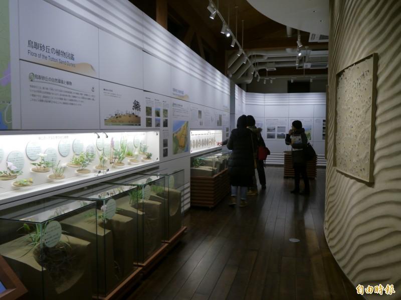 鳥取砂丘博物館詳細介紹砂丘植物生態。(記者張軒哲攝)