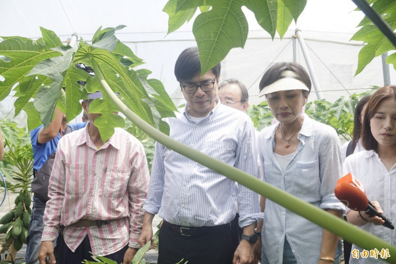 行政院副院長陳其邁認為民眾將會對韓喊出「NO,WE don't」。(記者黃佳琳攝)
