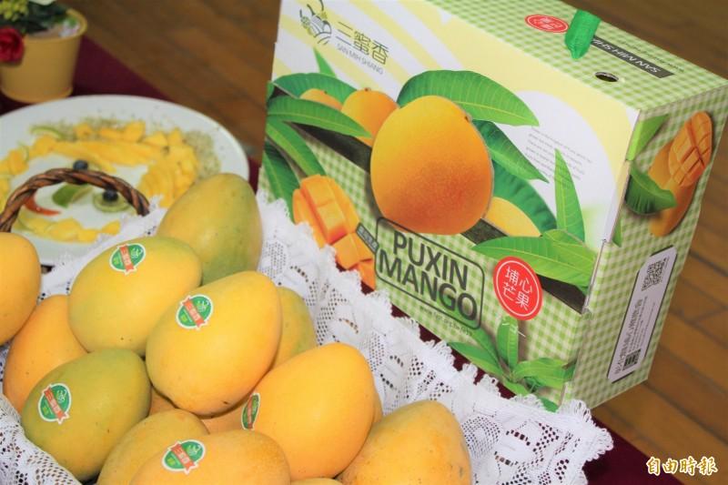郭萬從種植金蜜芒果有不錯的收入。(記者顏宏駿攝)