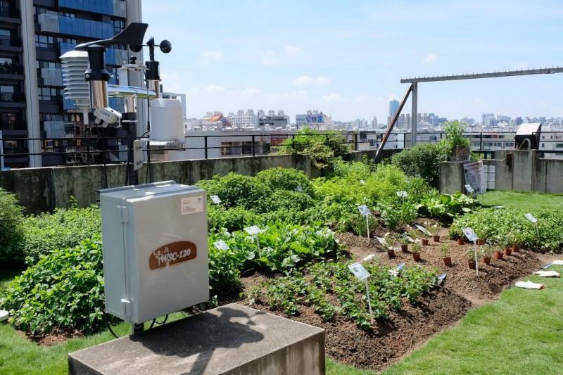南市環保局表示,打造綠屋頂可美化環境又節能省電。(南市環保局提供)