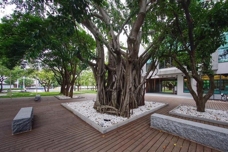 李科永紀念圖書館多次調整設計,降低樓高並克服施工困難,最後沒有破壞任何一棵樹。(高市圖書館提供)