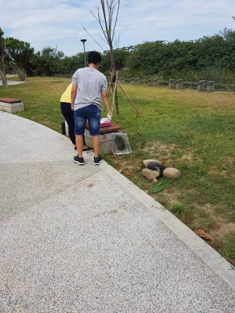扯!有外籍移工在市府港南運河公園內烤肉煎魚,市府巡查人員發現後立刻制止,但涼亭內及部分草皮都已受損,提醒民眾勿在公園內烤肉,以維持公共設施的正確使用。(市府提供)