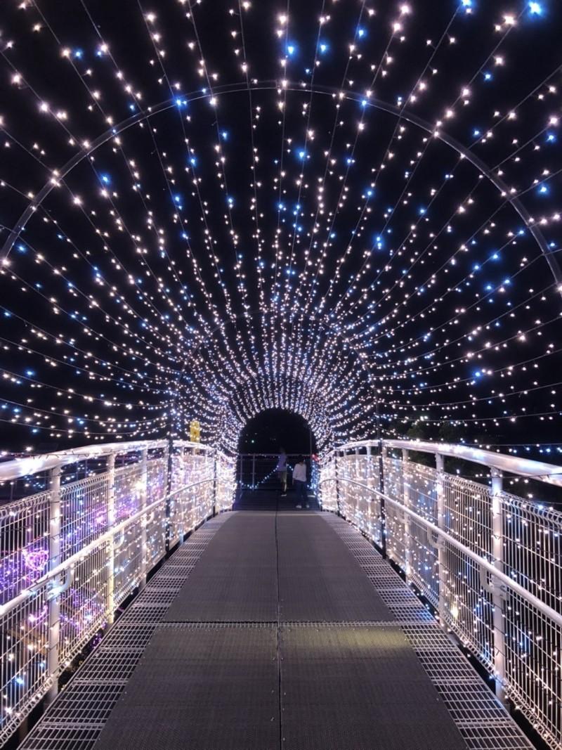 八卦山天空步道經由燈飾造景,打造成全國獨一無二、最長的幸福鵲橋。(圖市公所提供)