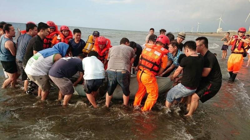 海巡人員和熱心民眾齊力將700公斤的柏氏中喙鯨搬運至沙灘上。(記者陳恩惠翻攝)