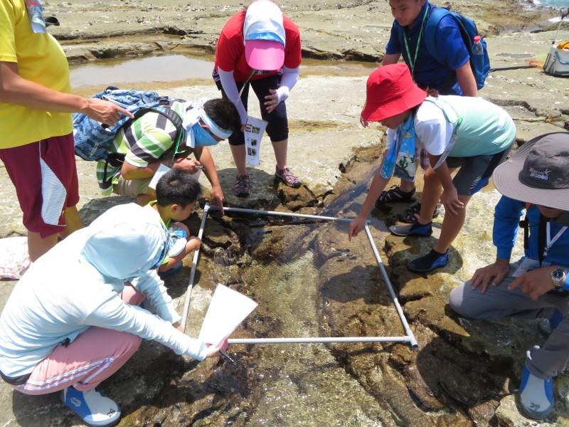 成員觀查潮間帶生物。(海管處提供)