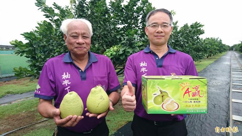 下營區農會理事長陳錄星(左)、下營區農會總幹事黃冠霖(右)稱讚下營文旦,並獎賞參加台南市文旦大賽的下營柚農。(記者楊金城攝)