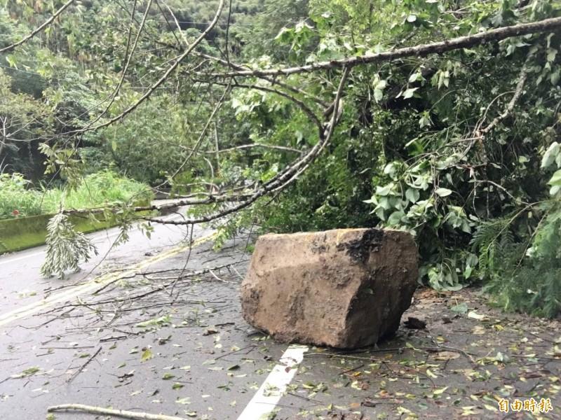 台21線道14.5K豐埔15橋處,出現落石及路樹倒塌情形。(記者張軒哲攝)