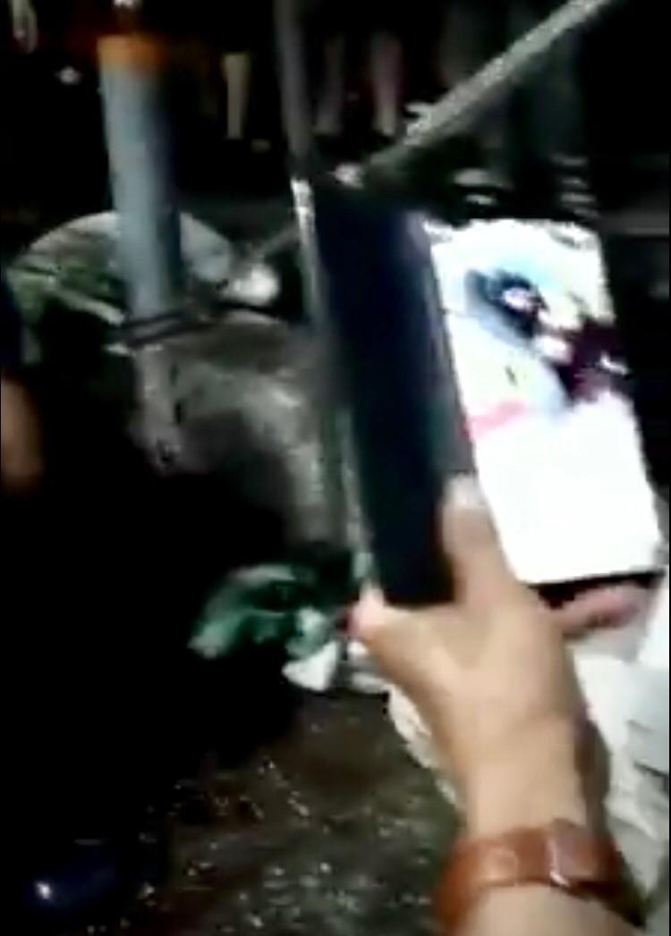 為了激起民眾的同理心,反神豬重量比賽的台灣動物社會研究會在網路上公開神豬在祭典當天凌晨被屠宰的悲慘狀況。(圖片擷取自網路)