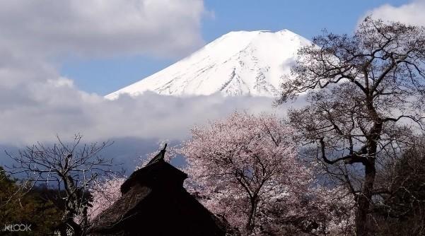 台灣人愛到日本旅遊,旅遊業者分析,今上半年有近250萬人次到日本旅遊,且愛買的產品前10名有4項都是交通周遊券。(KLOOK提供)