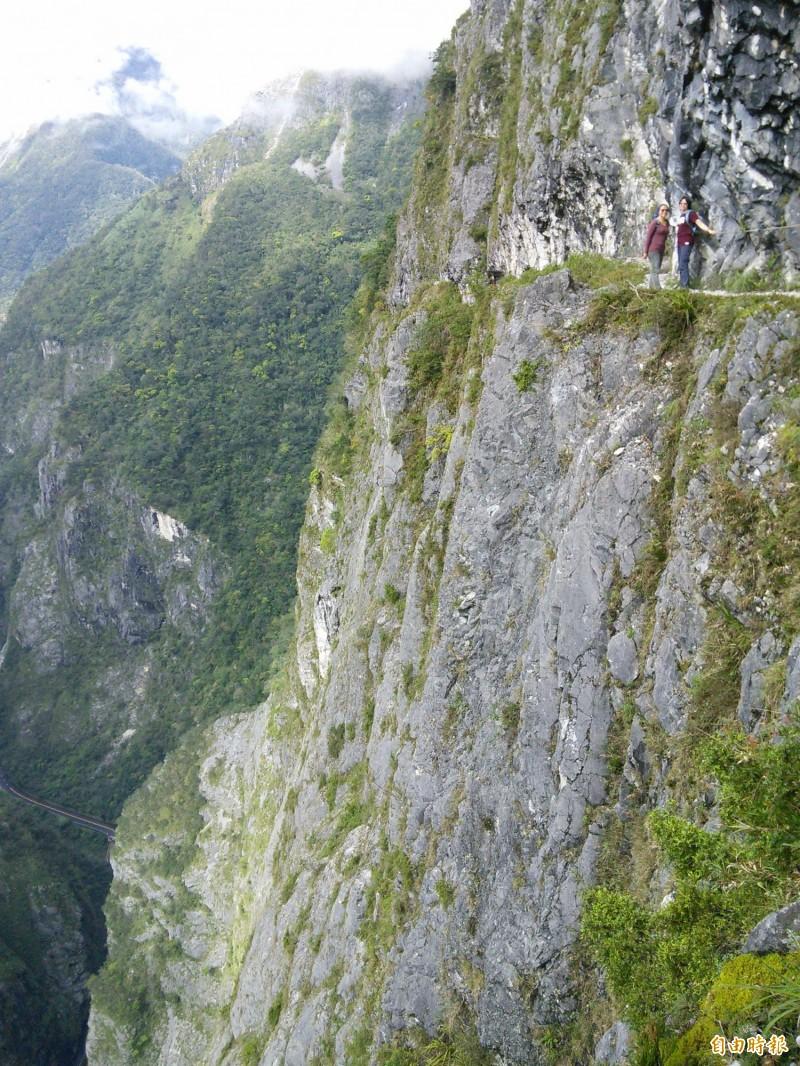 穿過錐麓大斷崖的錐麓古道是「合歡越嶺古道」的一部分,迄今百年歷史,走在上面如踏在雲端漫步,是熱門健行路線。(記者花孟璟攝)