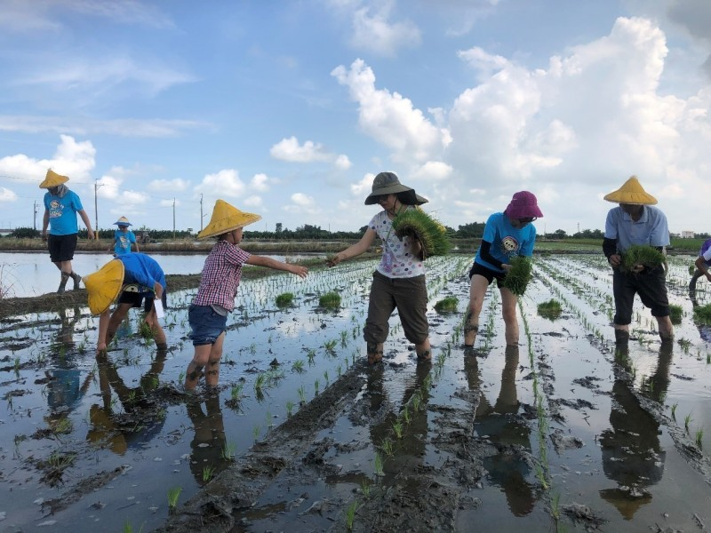 西拉雅國家風景區管理處推「台灣好行-關子嶺故宮南院線」,也可至經典小鎮後壁體驗田園風景。(圖由西拉雅管理處提供)