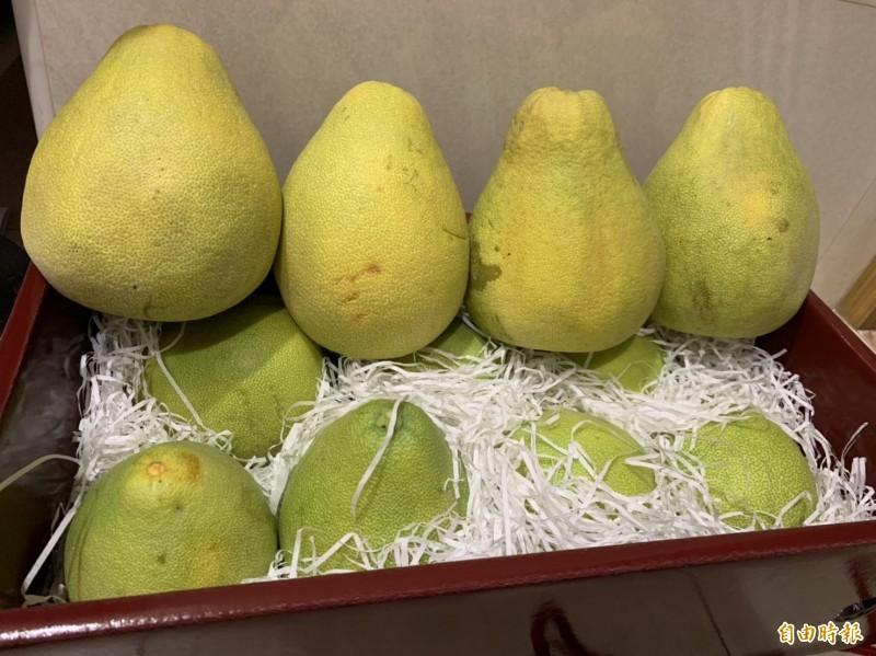 新北市政府主計處查訪應景食材的物價概況,多呈現上漲趨勢,其中文旦柚受颱風影響產量減少,比去年9月同期上漲12.36%。(記者賴筱桐攝)