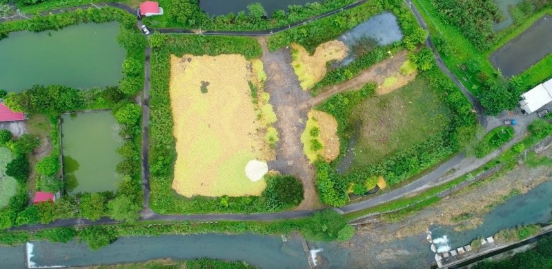 謝龍介出示瑞穗瑞燕段空拍畫面,指控農會大量棄置文旦。(圖擷取自空拍影片)