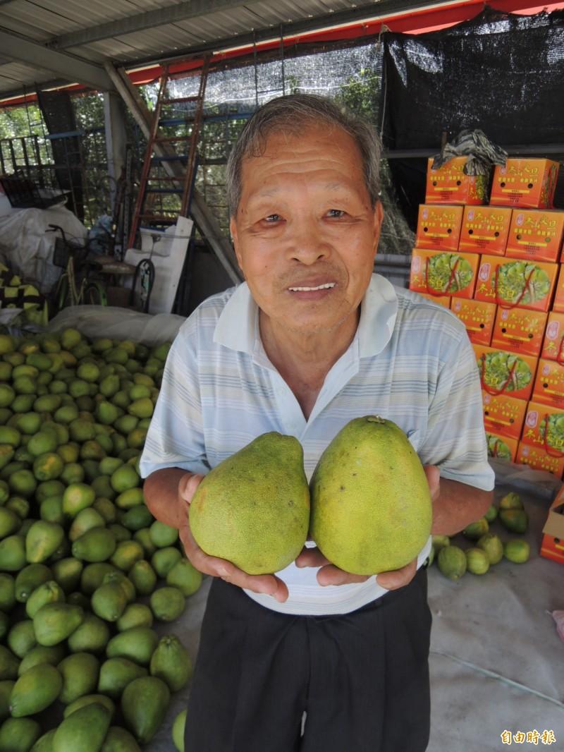 冬山鄉老農何清和,原本擔心柚子賣不出去而愁眉不展,經過本報報導,各界紛紛伸出援手,才露出久違的笑容。(記者江志雄攝)