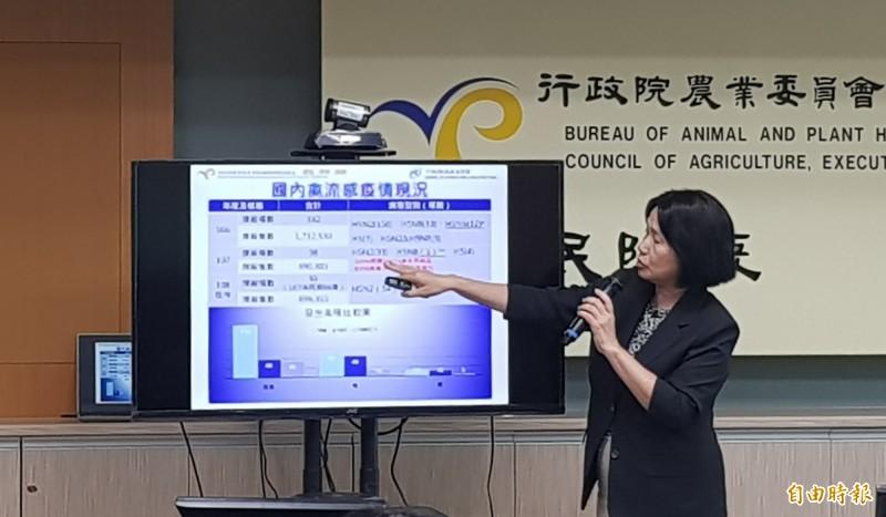 高雄市旗山區鴨場確診台灣首例H5N5禽流感病毒,撲殺超過3千隻鴨。(記者簡惠茹攝)