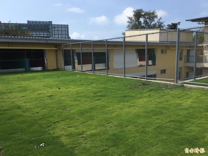 動保教育園區還有動物戶外的活動空間。(記者洪美秀攝)
