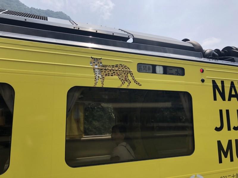 台鐵集集支線「國立集集美術館」石虎香蕉列車,車廂外已重貼石虎圖案,圖為台版石虎。(日管處提供)