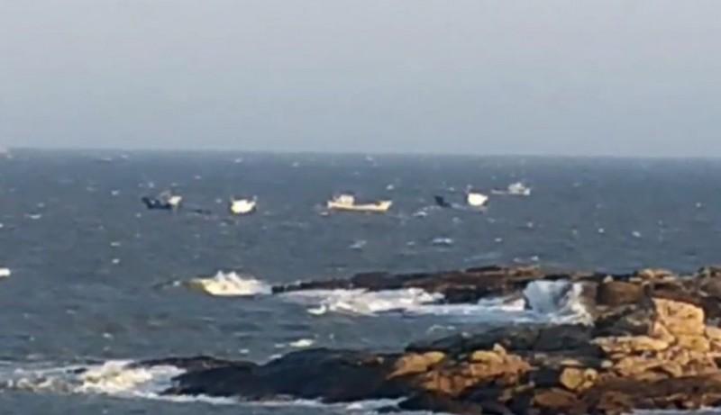 中國漁船越界到金門捕魚,引起漁民極大反彈。(圖由讀者提供)