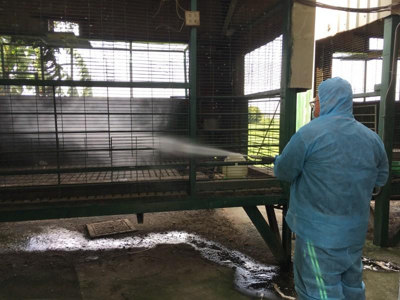 彰化縣動防所將針對民眾居家混養家禽場所,在該場周圍半徑1公里內之養禽場進行監測採樣工作,並加強周邊環境消毒工作。(圖動防所提供)